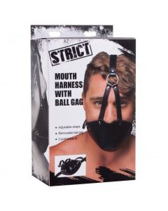Mouth Harness with Ball Gag - AE908